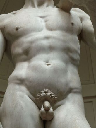 'David'_by_Michelangelo_JBU10